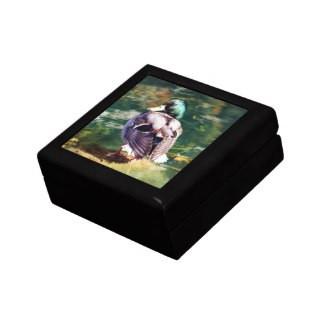 Mallard Duck Keepsake Gift Box