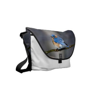 Eastern Bluebird Messenger Bag