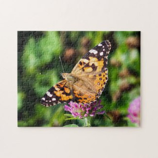 painted_lady_butterfly_on_red_clover_puz