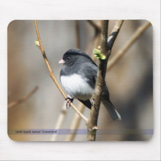 Dark-Eyed Junco Snowbird Mousepad