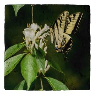 Tiger Swallowtail Butterfly Stone Trivet