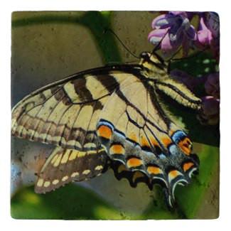 Tiger Swallowtail Stone Trivet