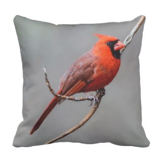 Northern Cardinal Pillow