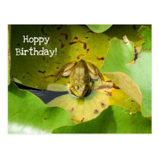 Frog on Lily Pads Hoppy Birthday Postcard