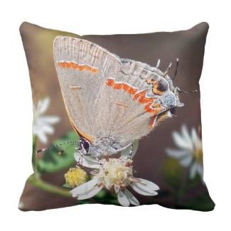 Dusky Blue Hairstreak Butterfly Throw Pillow