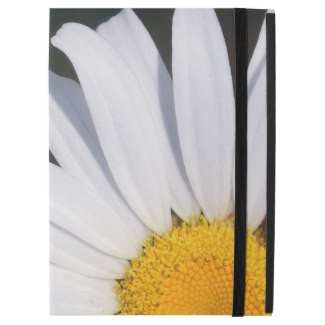 Offset Daisy iPad Case