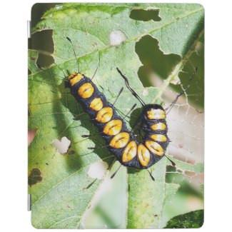 Paddle Caterpillar iPad Cover