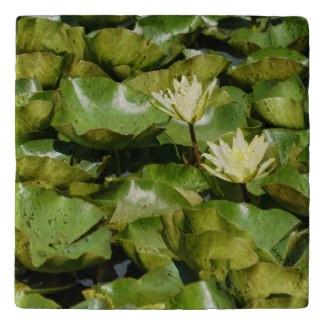 Lily Pads Stone Trivet