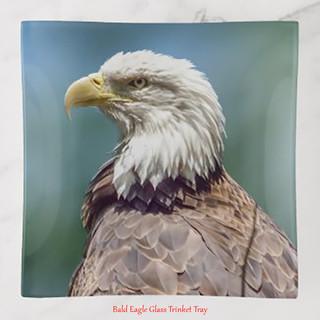 bald_eagle_trinket_tray.jpg