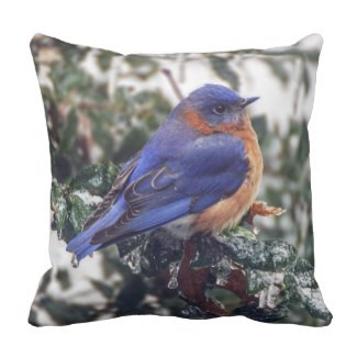 Eastern Bluebird on Ice Covered Holly Throw Pillow