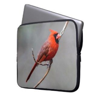 Cardinal Neoprene Laptop Sleeve