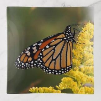 monarch_butterfly_on_goldenrod_trinket_t