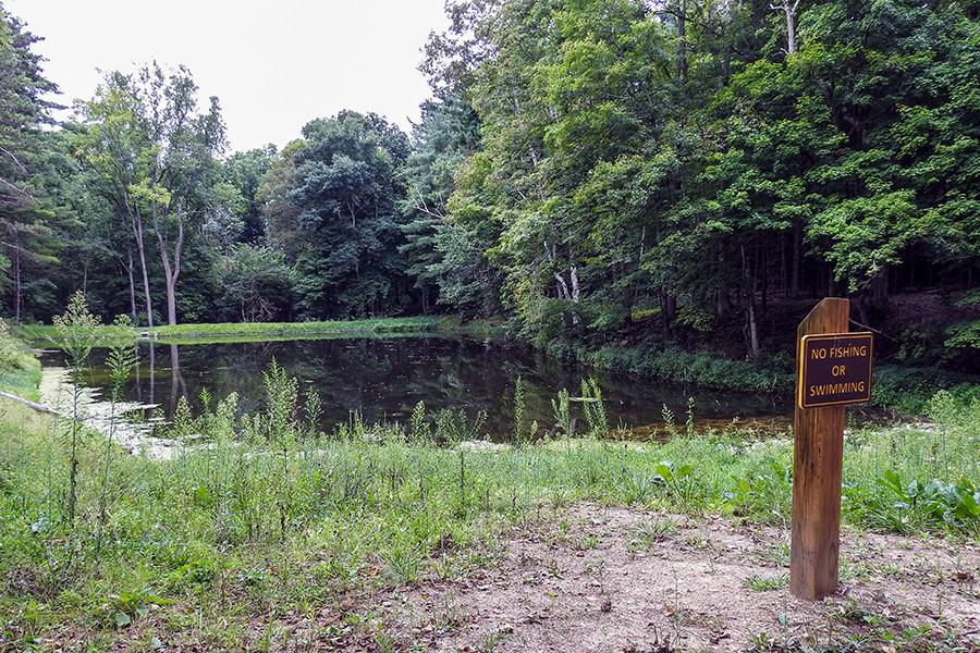 Pond at Mambourg Nature Center at Mambourg Park Lancaster Ohio