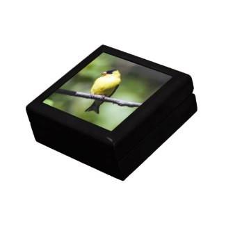 American Goldfinch Wooden Jewelry Keepsake Box