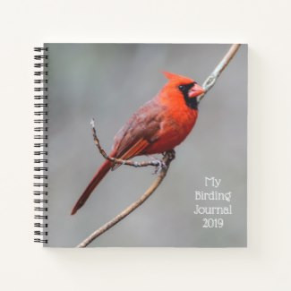 Northern Cardinal Perched on Limb Journal for Bird Watching