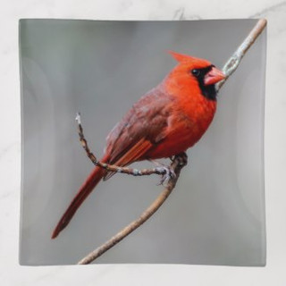 cardinal_glass_trinket_tray-rf25e3f3ad42