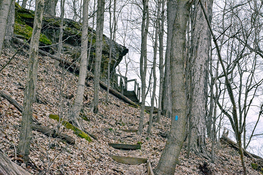 Steps leading to Allen Knob in Shallenberger State Nature Preserve