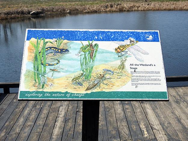 Wetland Sign at Scioto Audubon Metro Park