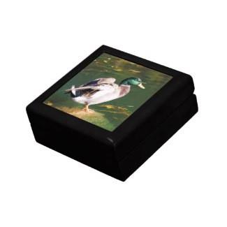 Mallard Keepsake Jewelry Gift Box