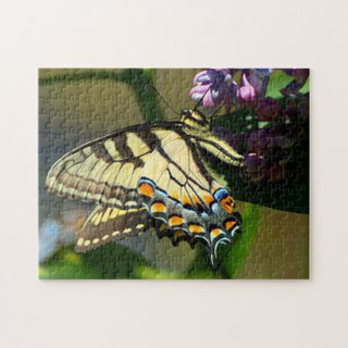 tiger_swallowtail_butterfly_on_lilac_puz