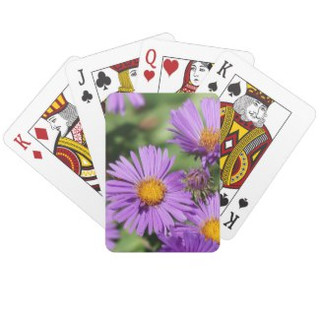 New England Aster Playing Cards