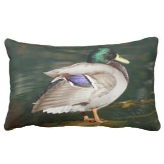 Mallard Duck Lumbar Pillow