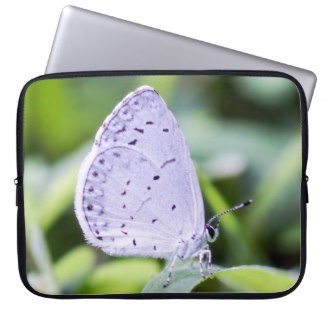 Spring Azure Butterfly Neoprene Laptop Sleeve