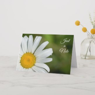Closeup of a white and yellow flower with green background notecard
