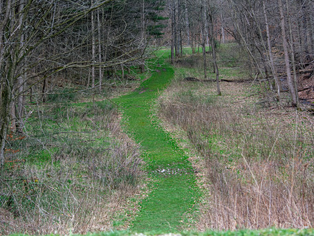 Boch Hollow State Nature Preserve