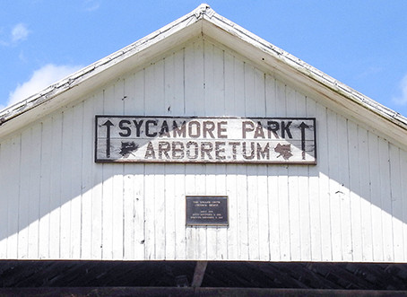 Sycamore Creek Park Arboretum