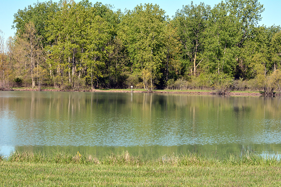 Maumee Bay State Park Campground in Oregon Ohio