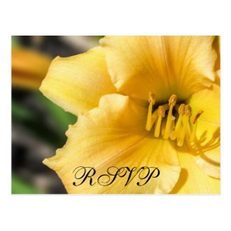 Offset Day Lily Wedding RSVP Postcard