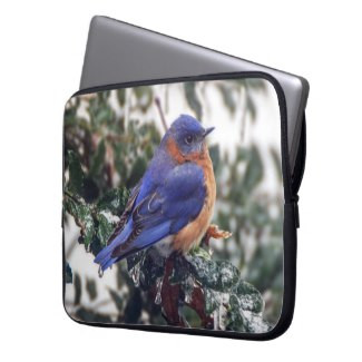 Eastern Bluebird Neoprene Laptop Sleeve
