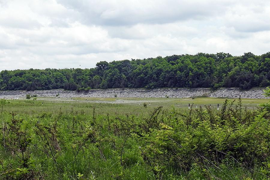 Fossil hunting at Caesar Creek Spillway in Williamsport Waynesville Ohio