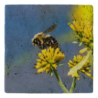 Bumble Bee on Yellow Wildflower Stone Trivet
