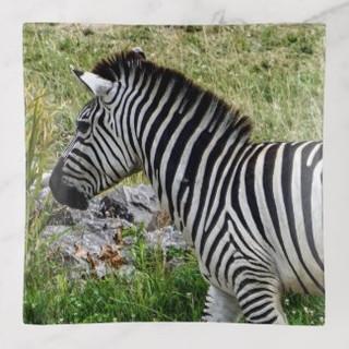 Zebra Glass Trinket Tray