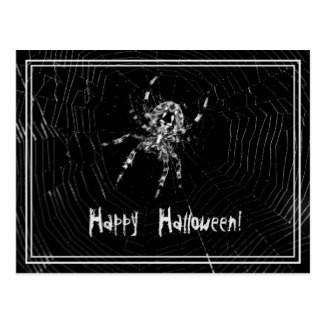 Happy Halloween Spider in Spiderweb Black and White Postcard