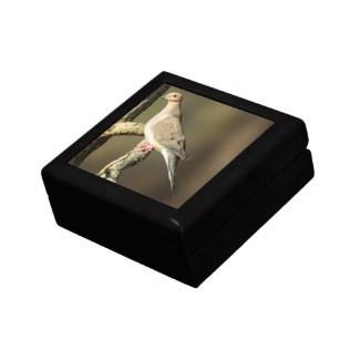 Mourning Dove Wooden Jewelry Keepsake Box