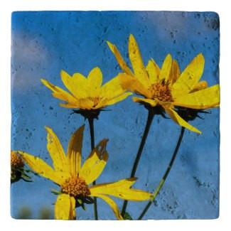Yellow Wildflowers Stone Trivet