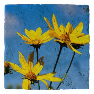 Yellow Wildflowers Stone Trivet