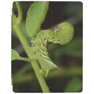 Tobacco Hornworm Caterpillar iPad Cover