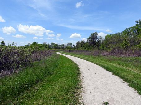 Pickerington Ponds Metro Park - Yellowlegs Trail