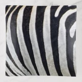 zebra_stripes_design_trinket_tray-r55d57