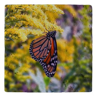 Monarch Butterfly Stone Trivet