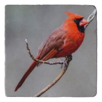 Cardinal Stone Trivet