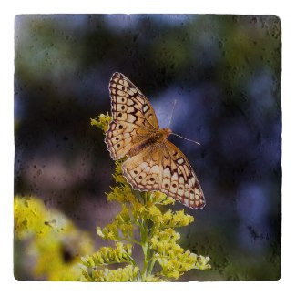 Butterfly on Goldenrod Stone Trivet