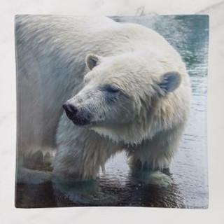 polar_bear_glass_trinket_tray-rf7ac95b7a