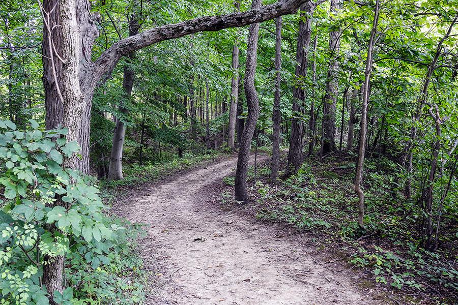 Trail at Mambourg Park Lancaster Ohio