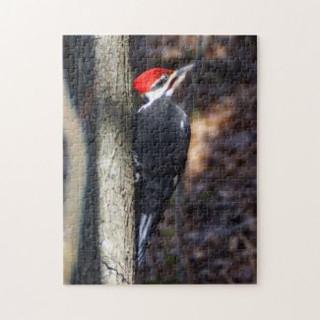 pileated_woodpecker_puzzle-rd2bb1b2b65bb