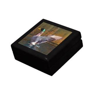 Mallard Keepsake Gift Box